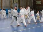 Hinode_Karate_Sawada_2014_27
