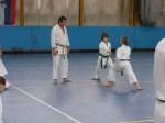 Hinode_Karate_Sawada_2014_28