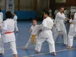 Hinode_Karate_Sawada_2014_38