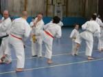 Hinode_Karate_Sawada_2014_39