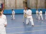 Hinode_Karate_Sawada_2014_40