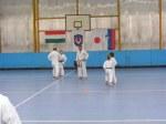 Hinode_Karate_Sawada_2014_41