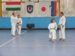 Hinode_Karate_Sawada_2014_42