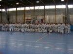 Hinode_Karate_Sawada_2014_43