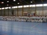Hinode_Karate_Sawada_2014_44
