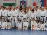 Hinode_Karate_Sawada_2014_45