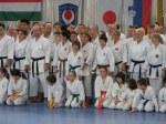 Hinode_Karate_Sawada_2014_46