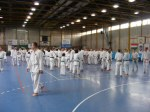 Hinode_Karate_Sawada_2014_50