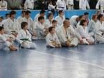 Hinode_Karate_Sawada_2014_52