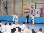 Hinode_Karate_Sawada_2014_54
