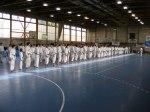 Hinode_Karate_Sawada_2014_58