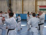 Hinode_Karate_Sawada_2014_61