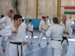Hinode_Karate_Sawada_2014_62