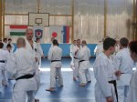Hinode_Karate_Sawada_2014_63