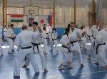 Hinode_Karate_Sawada_2014_66
