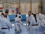 Hinode_Karate_Sawada_2014_67