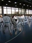 Hinode_Karate_Sawada_2014_71