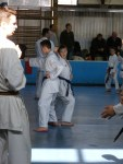 Hinode_Karate_Sawada_2014_73