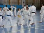 Hinode_Karate_Sawada_2014_75