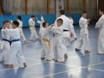 Hinode_Karate_Sawada_2014_76