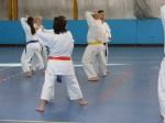 Hinode_Karate_Sawada_2014_77