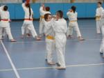 Hinode_Karate_Sawada_2014_80