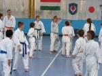 Hinode_Karate_Sawada_2014_82