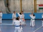 Hinode_Karate_Sawada_2014_84