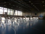 Hinode_Karate_Sawada_2014_85