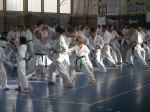 Hinode_Karate_Sawada_2014_86