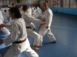Hinode_Karate_Sawada_2014_87