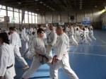 Hinode_Karate_Sawada_2014_88