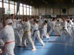Hinode_Karate_Sawada_2014_89