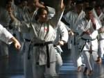 Hinode_Karate_Sawada_2014_93