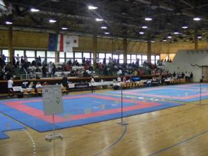 hinode_karate_gödöllö_2014_001