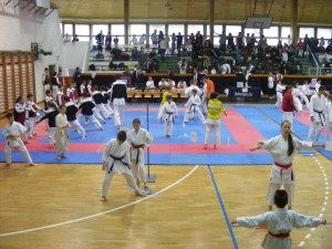 hinode_karate_gödöllö_2014_002