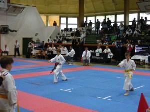 hinode_karate_gödöllö_2014_015