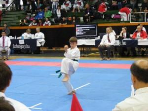 hinode_karate_gödöllö_2014_017