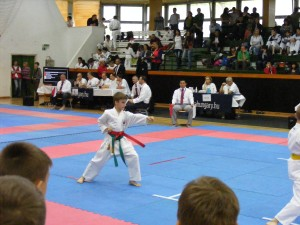 hinode_karate_gödöllö_2014_019