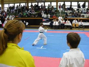 hinode_karate_gödöllö_2014_024