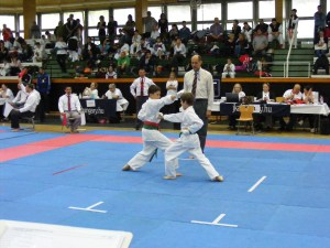 hinode_karate_gödöllö_2014_033