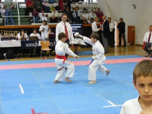 hinode_karate_gödöllö_2014_034