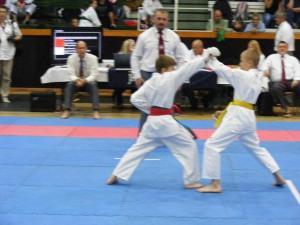 hinode_karate_gödöllö_2014_039