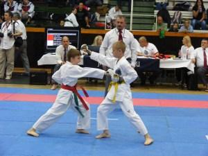 hinode_karate_gödöllö_2014_040