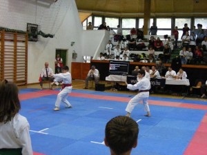 hinode_karate_gödöllö_2014_054