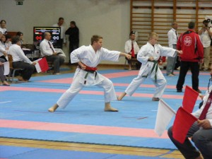 hinode_karate_gödöllö_2014_063
