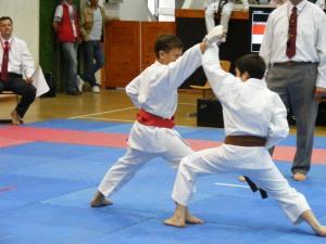 hinode_karate_gödöllö_2014_066