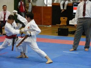 hinode_karate_gödöllö_2014_067