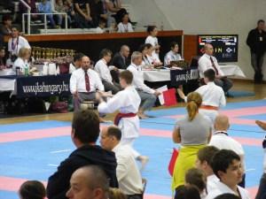 hinode_karate_gödöllö_2014_069