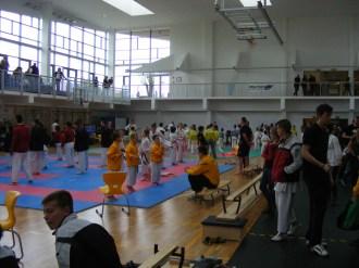 hinode_karate_torokbálint_jka_2014_001